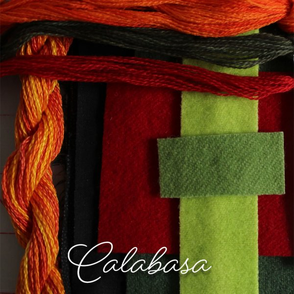Fingertip Gloves: Calabasa
